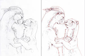 otter love by hibbary