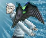 wings of speed