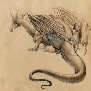 Conte dragon