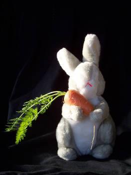 Bun Bun's Carrot