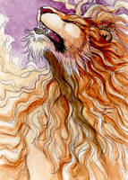 lion ACEO by hibbary