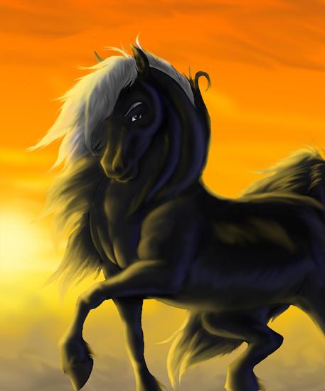 stallion John by hibbary