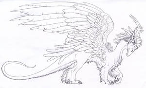 furry dragon lines 1
