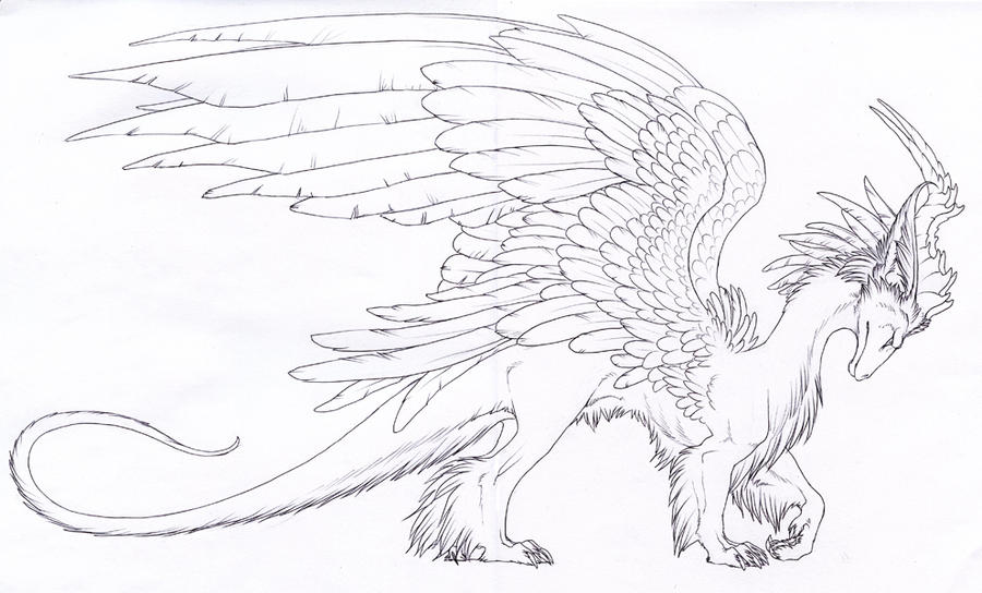 furry dragon lines 1 by hibbary on deviantart