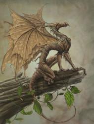 draco ramulus