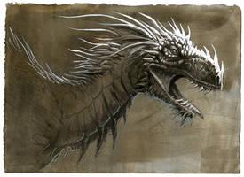 Dragon study by hibbary