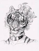 Tigerlily by hibbary