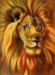 Golden Lion Sketchbook Cover