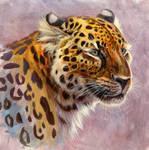 Saber-Toothed Leopard