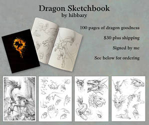 Dragon Sketchbooks are Here!