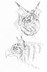 Tiger griffin by hibbary