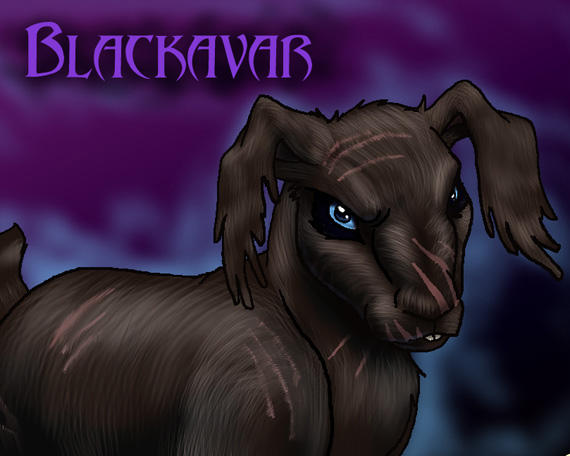 Blackavar by hibbary