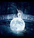 .moon bridge