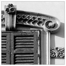 Window by Philla