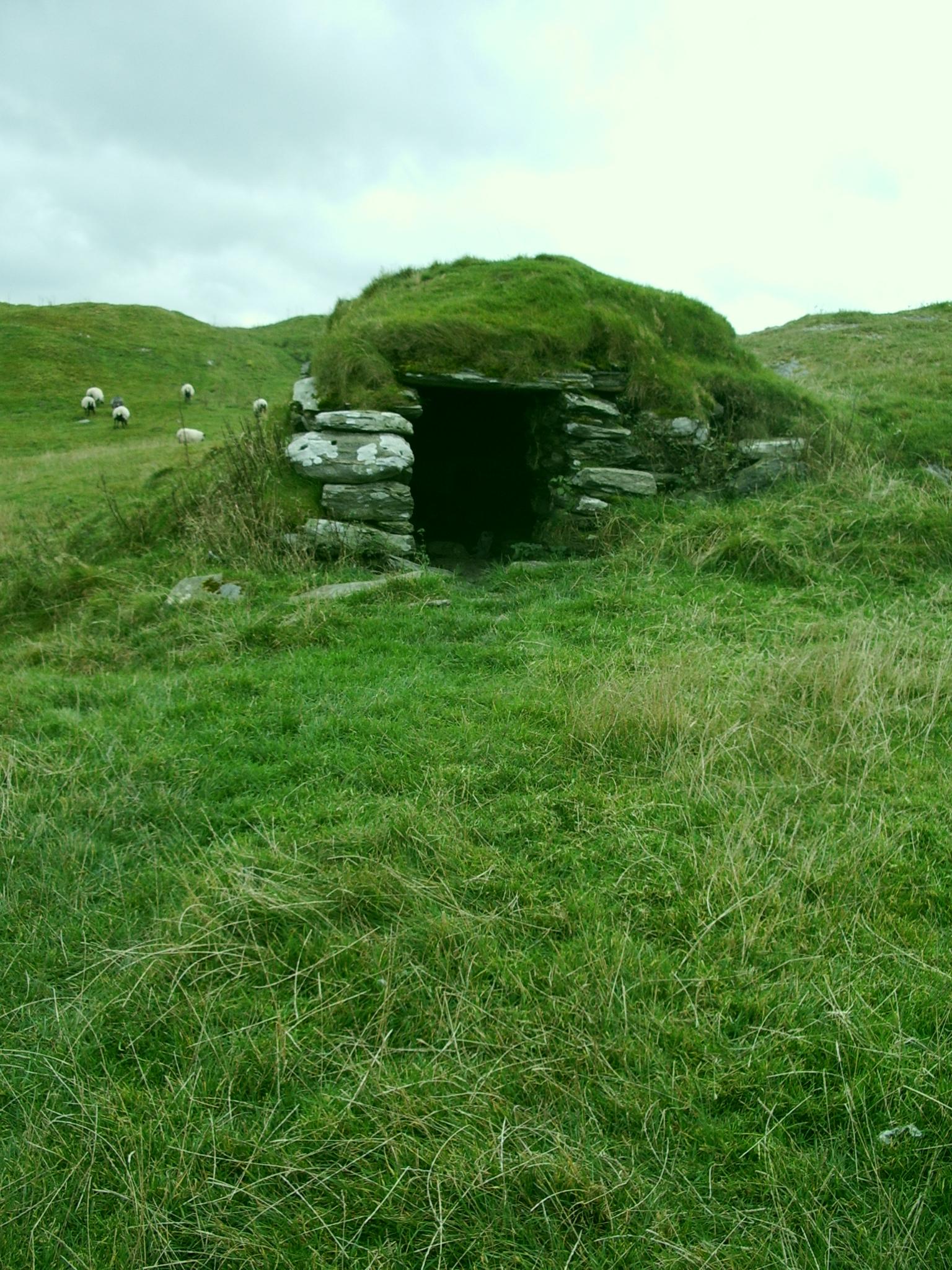 Shelter by NaviStock
