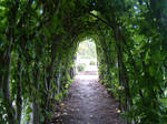 Green Tunnel 2