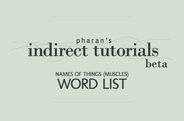 Muscle Word List by Pharan