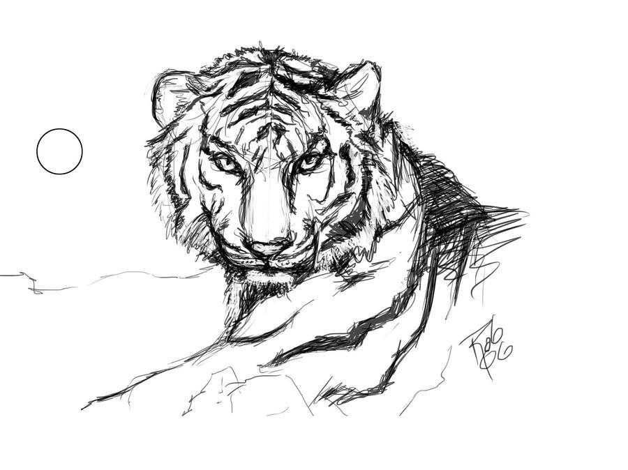 Boceto tigre by elguaricho for Immagini tigre da colorare