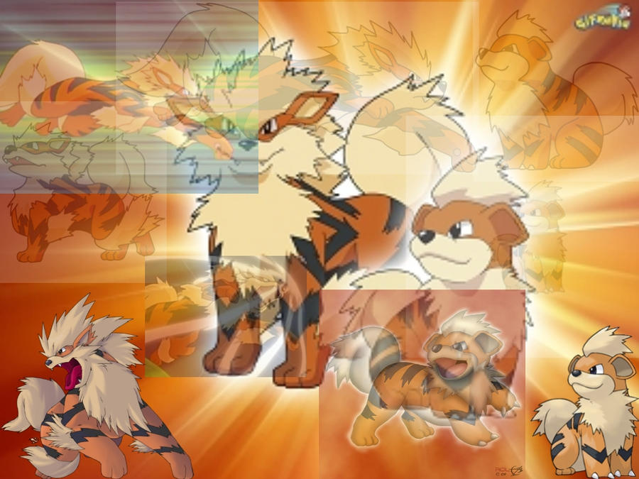 growlithe wallpaper - photo #28