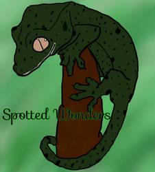 Spotted Wonders Logo by rtsbts
