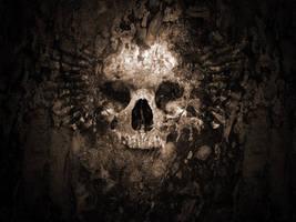 Skull Wallpaper V2 by iRoot