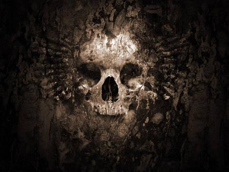 Skull Wallpaper V2