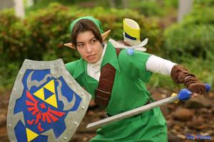 Link: Fierce Battle by MandyNeko