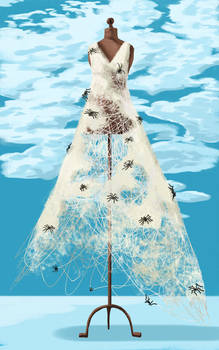 Spiders dressmakers