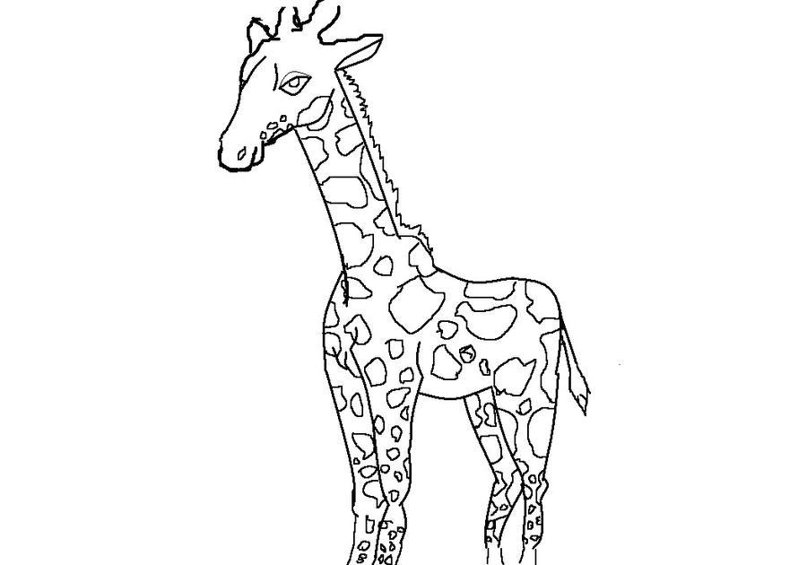 Line Art Giraffe : Seite nicht gefunden telekine fernsehproduktion