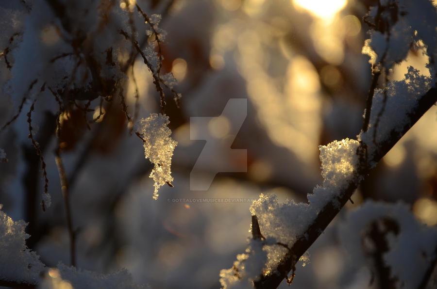 Winter Wonder by GottaLoveMusic88