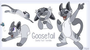 Goosetail - Warrior Cat OC