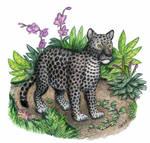 Speckled Tiger