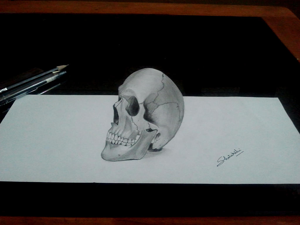3d human skull pencil drawing by pencilartlove