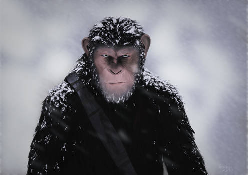 Caesar - War Of Planet Of The Apes
