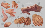 Hand Study 3 - Young and Old