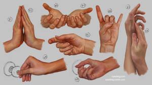 Hand Study 4
