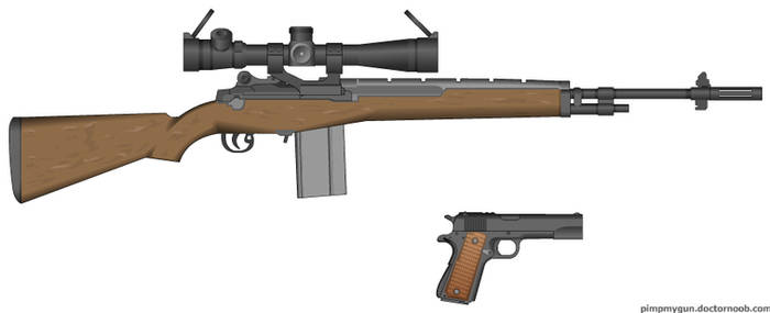 M-14 and M-1911 45.Auto