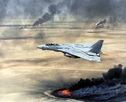 Grumman F-14B Tomcat by GeneralTate