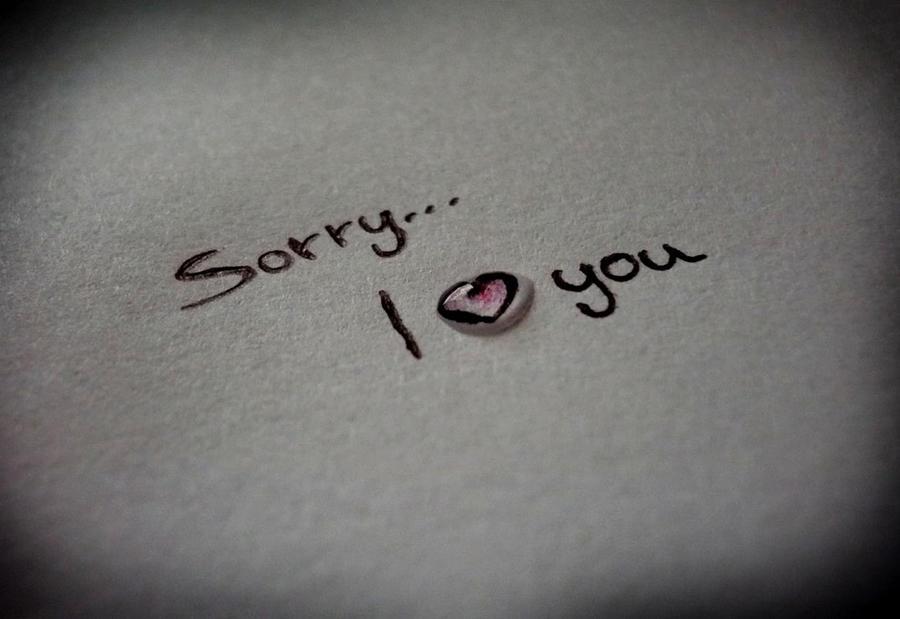 sorry...i love you by seisuzy ...