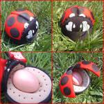 Ladybug by SmallVixen