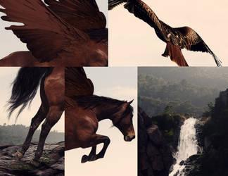 Flight --- Details by Kurayami-o0o