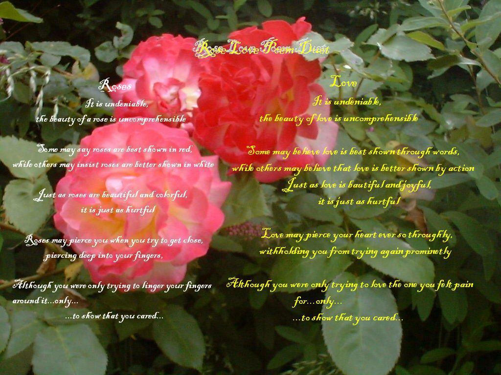 Rose Love Poem Duet By Cabit On Deviantart