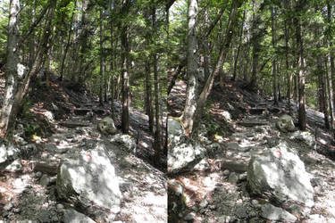 Stereoscopic follow the path by GizmoX7