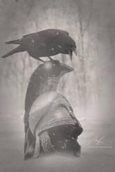 Three Eyed Raven by CelticStrm