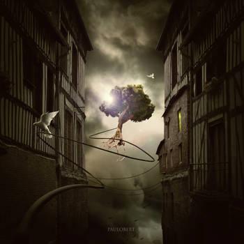 Floating Tree by Paulo-Bert