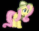 FlutterDo or DaringShy