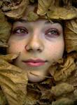 autumn eyes... by dilemmanya