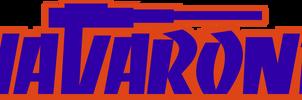 Navarone logo