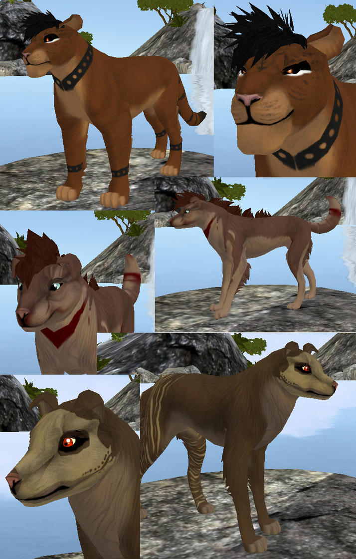 Feral Heart: Feral Heart Characters By Izusa On DeviantArt
