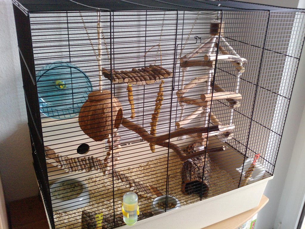 new big mouse cage by izusa on deviantart